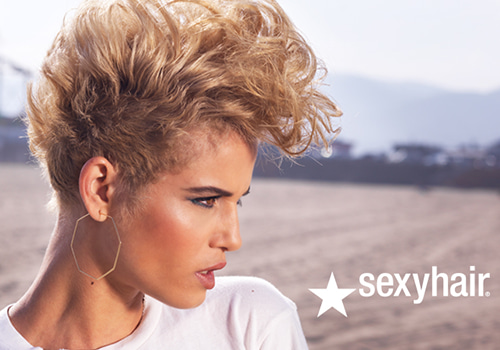 sexyhair logo and model